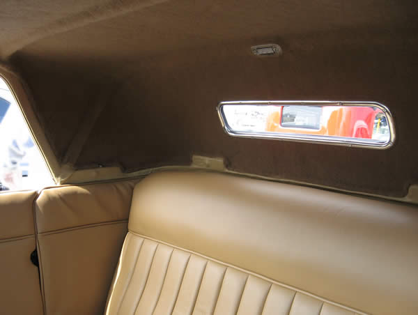 Photo of Terry's interior shows our headliner and dome light.